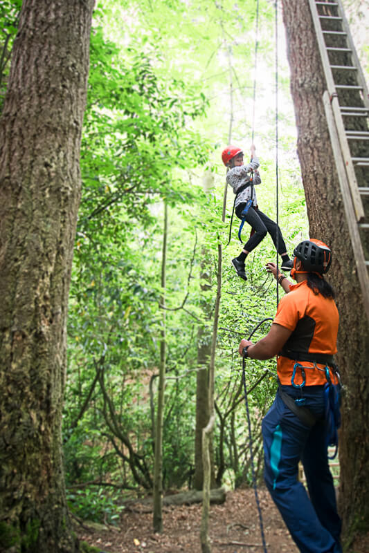 Abseiling in the trees